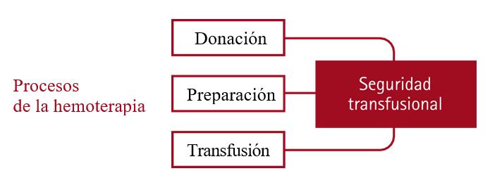 Procesos de la hemoterapia salud ocupacional