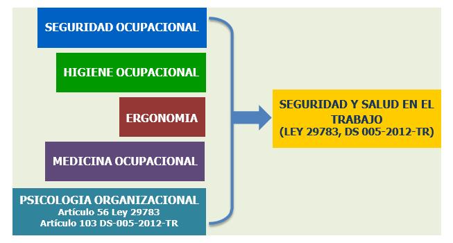 SEGURIDAD Y SALUD EN EL TRABAJO LEY 29783